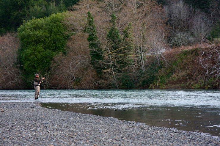 Fishing on a coastal steelhead river