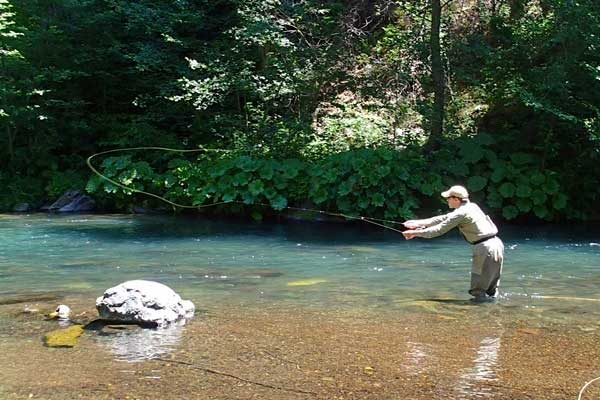 A nice cast with a dry fly on the McCloud River