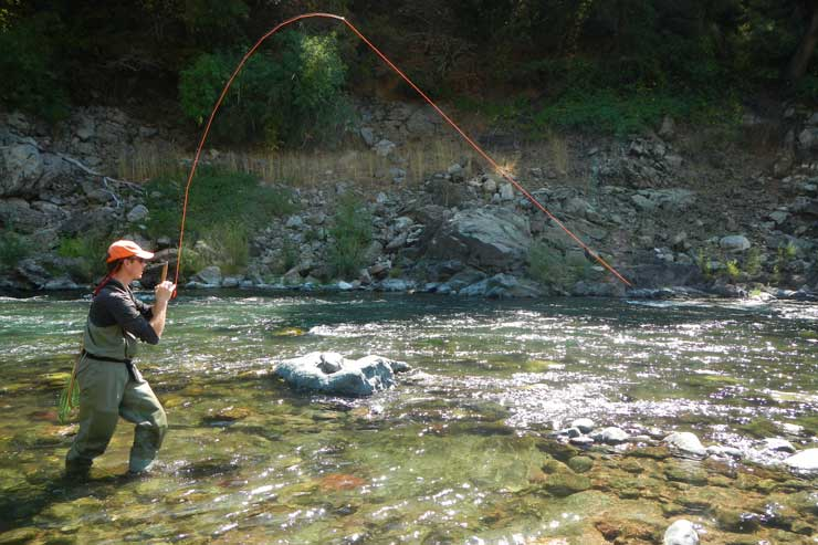 An angler lands a fish on the Lower McCloud